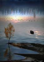 Igor Zenin Photographer - Tutt'Art@ (4)