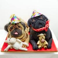 Gâteau d'anniversaire - Chiens Carlins