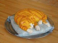 Chat dormeur