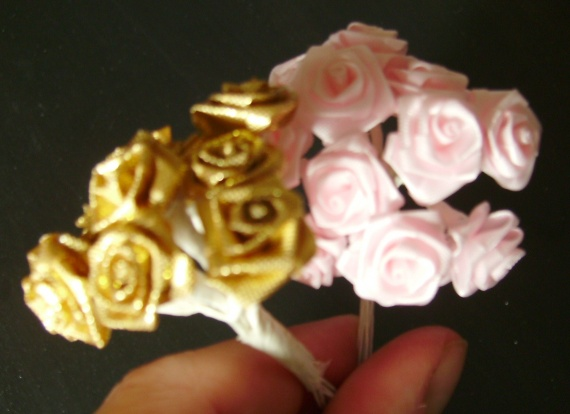 zoom roses