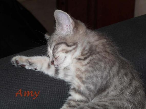 Amy 27-07