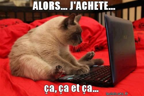 chat avec-ordinateur