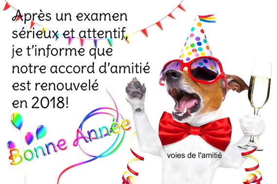 bonne-annee__