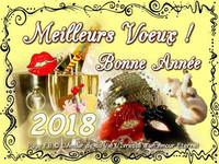 bonne-annee_