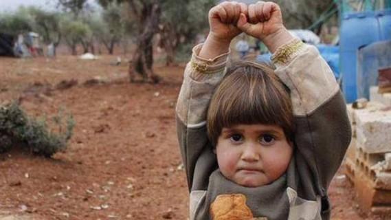 syrian 1