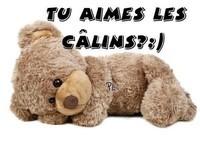 calins_015