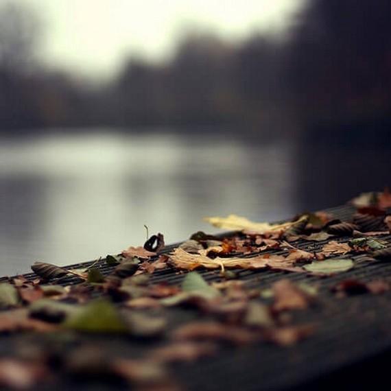 -nature 2