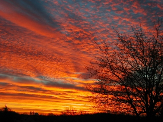 coucherlever-soleil-hiver-lever-sautron-918695