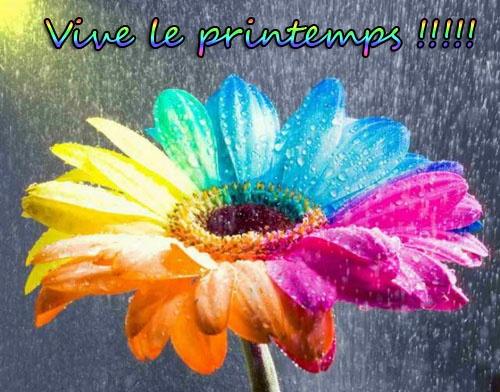 private-category-vive-printemps-img