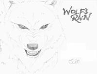 Loup -wolf rain- (gris)0001