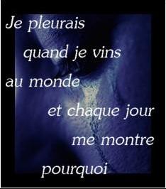 citations_diverses_joliecarte7