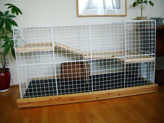 un cage spacieuse lapin pour moindre frais hamsters cochons d 39 inde lapins forum animaux. Black Bedroom Furniture Sets. Home Design Ideas