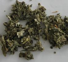 framboisier-feuilles