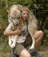 Ado et loup