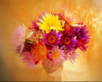 flower__28
