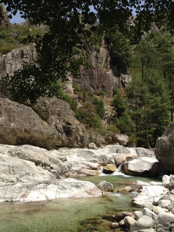 Corse Corte vallée restonica