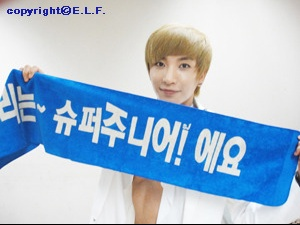 super-junior-elf-1