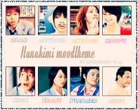 hanakimi
