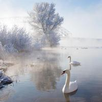 winter-landscapes-17