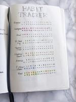 Bullet-Journal-Habit-Tracker-2