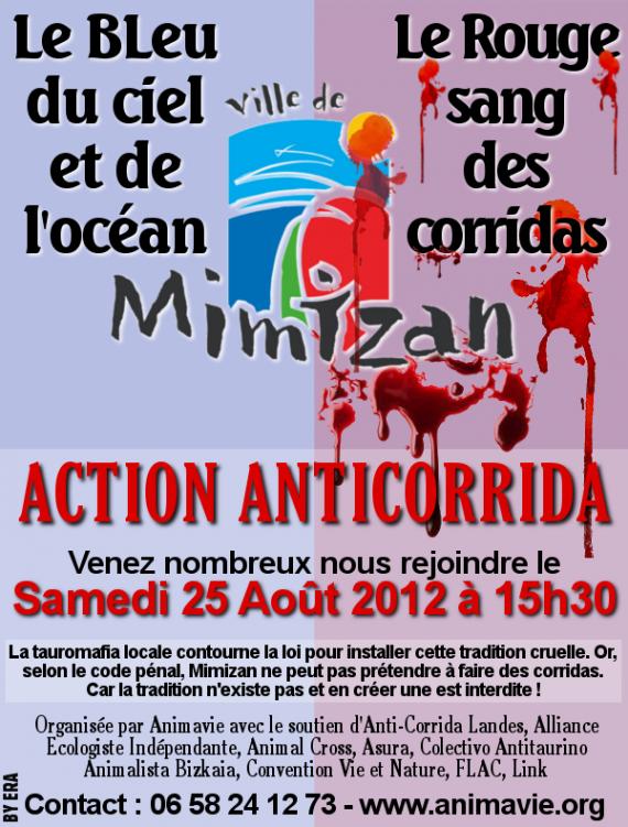 Affiche Mimizan 2012