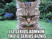 admin_lolcat