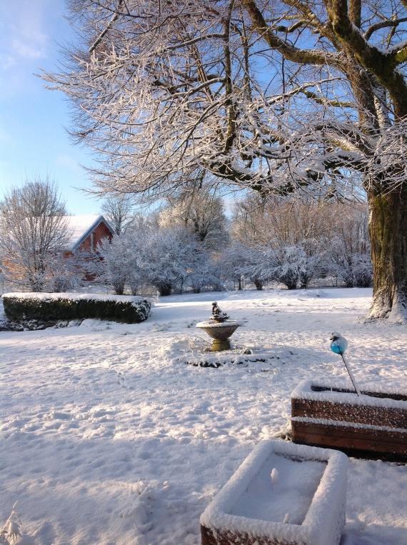 Jardin la neige les amis du chat doctissimo for Au jardin by les amis