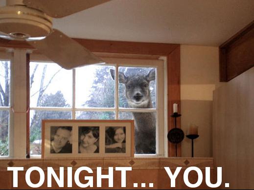 Tonight... YOU.
