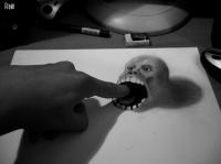 dessins-effet-3d-fusain-perspective-fredo-07