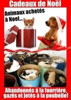 cadeaux de Noël !