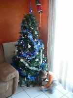 Sapin et papy syril 036
