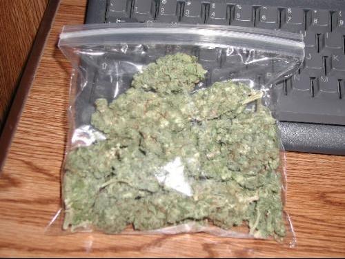 weed10.jpg1.