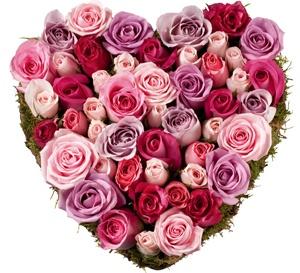 Mariage fushia et blanc th me photographie mariage forum vie pratique - Bouquet de roses en forme de coeur ...