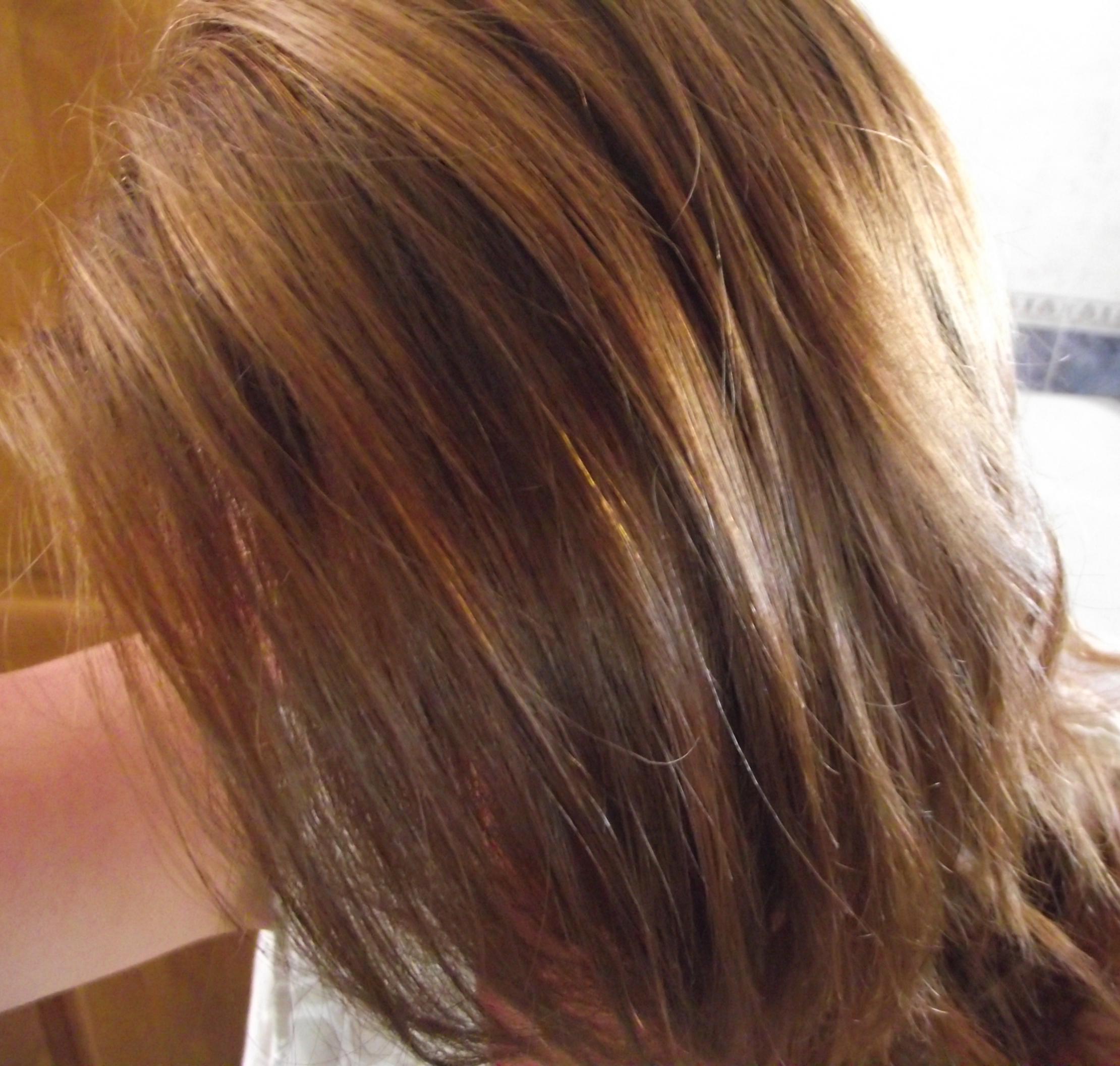 Cheveux chocolat meche caramel fashion designs - Passer de blonde a brune ...
