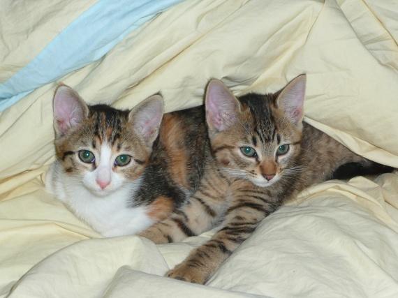 Bella et sa soeur Leera
