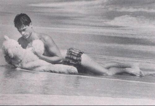 beachbear