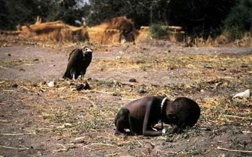 enfant vautour