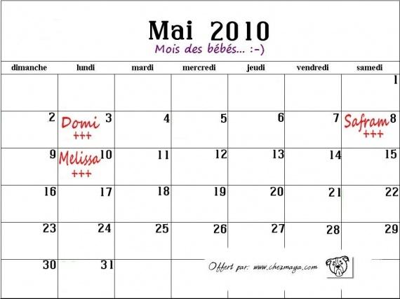 mai2010