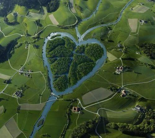 la nature a du coeur (jeu) - Page 3 Amour-gamaniak-com_nature-coeur-img