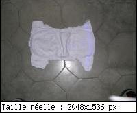 mini_1178994DSCN5255