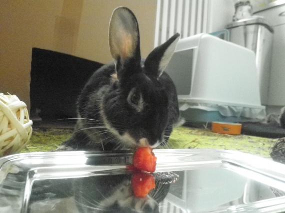 Atalante et la fraise