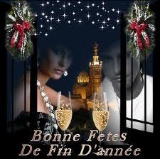 bonn-annee-2012-fete-fin-dannee-img