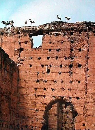 les cigognes, palais el badi