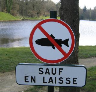 poisson interdit sauf en laisse
