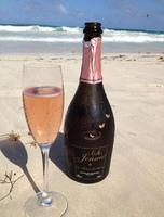 so jennie -champagne sans alcool 0,0