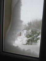 vue à travers la fenêtre