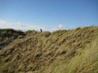 Les dunes avec Sania en haut