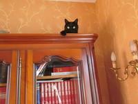 Hugo dans le bureau