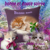 Bisous