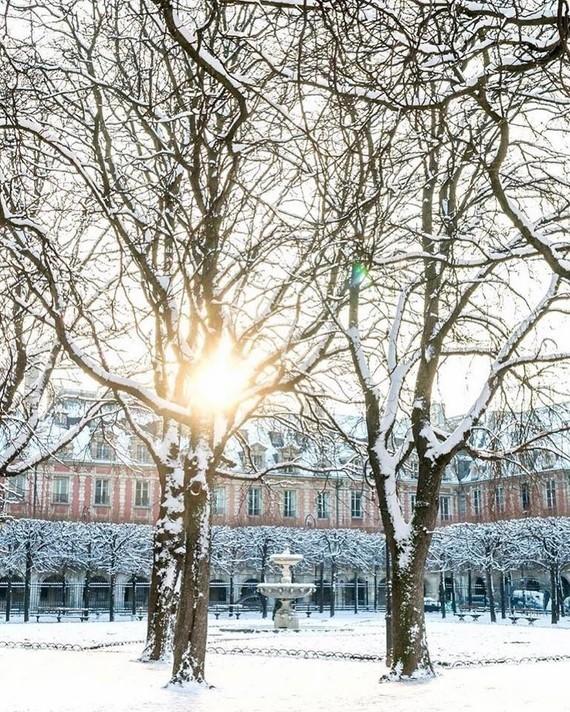 PARIS Square des Vosges